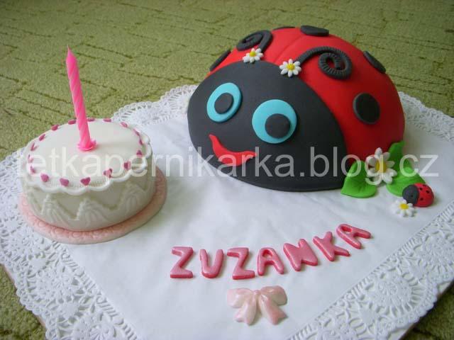 Beruska_pro_Zuzanku_00